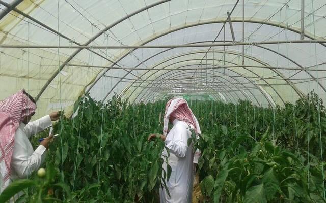 الصندوق الزراعي السعودي يبدأ استقبال طلبات القروض العادية بمنطقة الدرع العربي