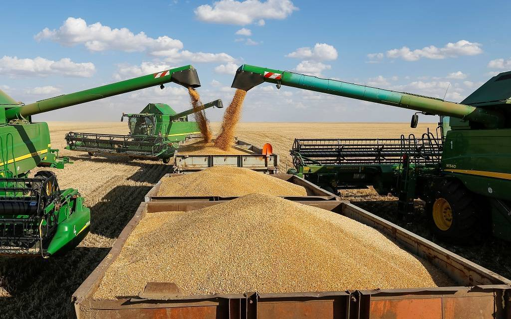 Saudi grain pays the dues of the tenth batch of local wheat farmers for the 2020 season