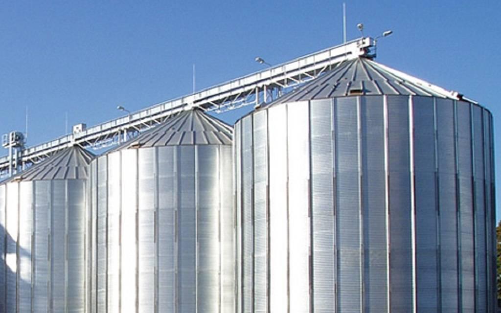 الحبوب السعودية تبدأ استلام القمح المحلي من المزارعين