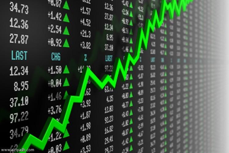 تفوق ثاني أكبر صناديق الأسهم السعودية التقليدية